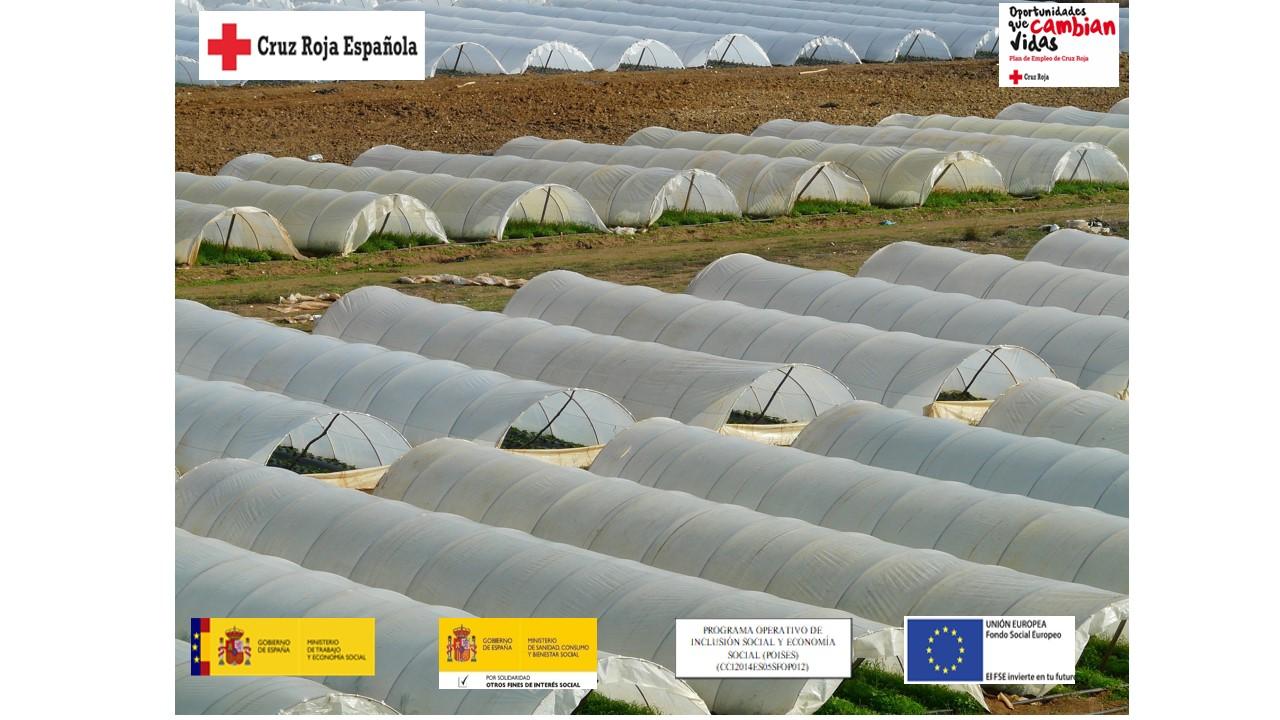 OPERACIONES BÁSICAS DE AGRICULTURA Y ENVASADO DE PRODUCTOS HORTOFRUTICOLAS