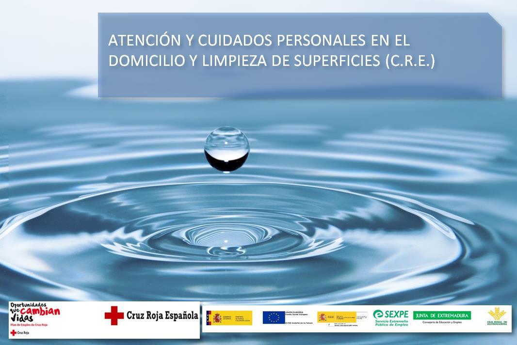 ATENCIÓN Y CUIDADOS PERSONALES EN EL DOMICILIO Y LIMPIEZA DE SUPERFICIES(C.R.E.)